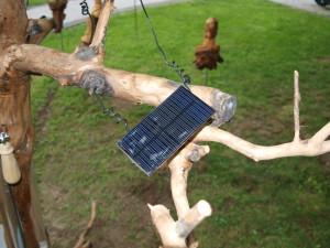Ein Solarmodul des Speicherbaums